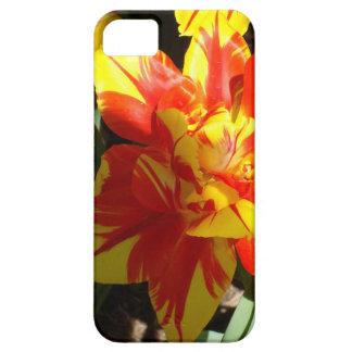 Caso del iPhone del tulipán de la explosión de la iPhone 5 Funda