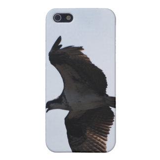 Caso del iPhone del vuelo de Osprey iPhone 5 Cárcasa
