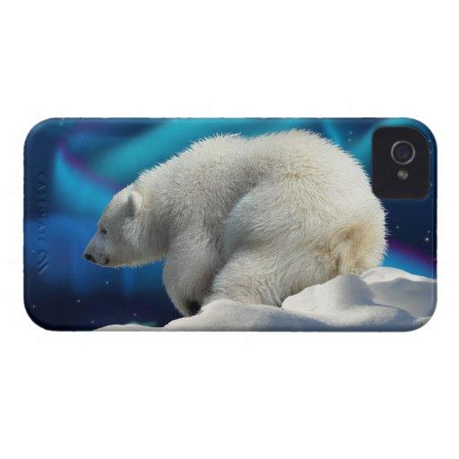 Caso del iPhone lindo 4 del oso polar Cub y de la  iPhone 4 Cobertura