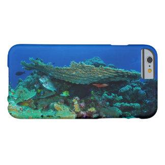 Caso del iPhone tropical 6 de los pescados y del Funda De iPhone 6 Barely There