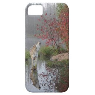 Caso del lobo gris iphone5 iPhone 5 cárcasas
