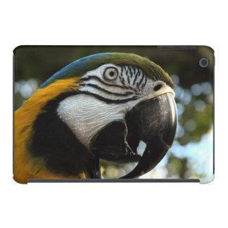 Caso del Macaw del azul y del oro Funda De iPad Mini