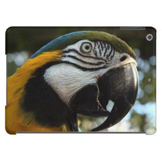 Caso del Macaw del azul y del oro Funda Para iPad Air