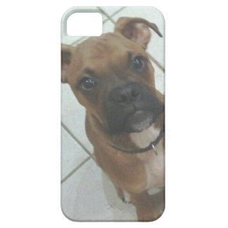 Caso del perro de Iphone 5 Funda Para iPhone 5 Barely There