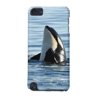 Caso del tacto de iPod de la orca