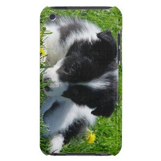 Caso del tacto de iPod del perrito del border coll iPod Case-Mate Carcasas