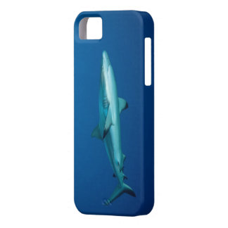 caso del tiburón del iPhone 5 iPhone 5 Funda