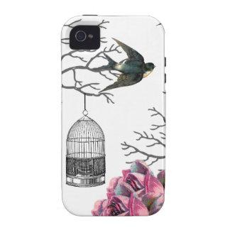 Caso del trago de los rosas del Birdcage del vinta iPhone 4/4S Carcasa