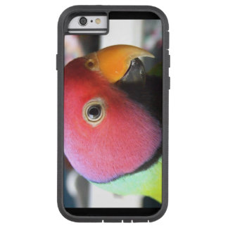Caso dirigido ciruelo del iPhone 6 del Parakeet Funda Tough Xtreme iPhone 6