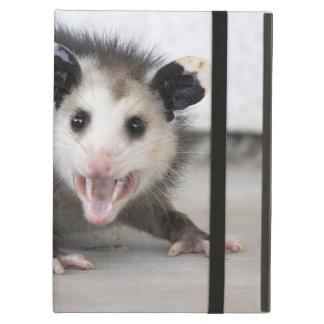Caso divertido de Powis del oposum de la foto del