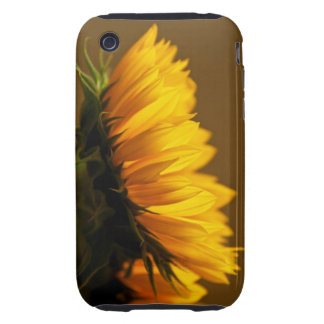 Caso duro soleado del iphone 3/3s del perfil iPhone 3 tough carcasa