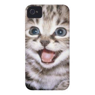 Caso emocionado de IPhone del gatito iPhone 4 Protectores