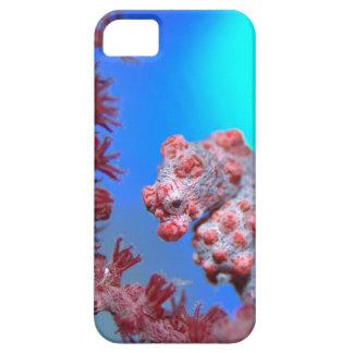 Caso enano de Iphone 5/5S del Seahorse iPhone 5 Case-Mate Protectores