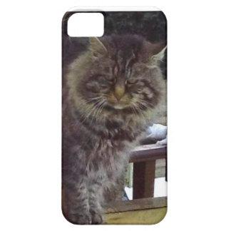 Caso enojado del iPhone 5 del gato apenas Funda Para iPhone SE/5/5s
