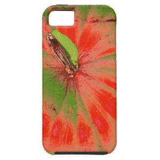 caso enrrollado del iPhone de la calabaza iPhone 5 Carcasas