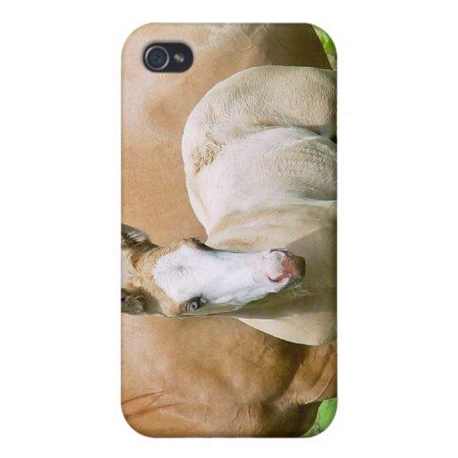 Caso equino del iPhone 4 del arte iPhone 4 Carcasa