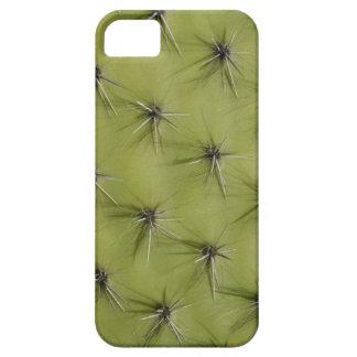 Caso espinoso del iPhone del cactus iPhone 5 Carcasas