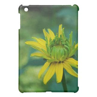 Caso falso de florecimiento del iPad del girasol