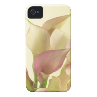 Caso floral de Lilly Iphone 4S de la cala Carcasa Para iPhone 4