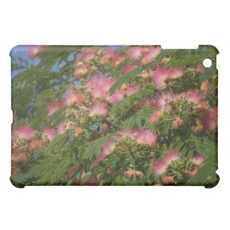 Caso floreciente del iPad del árbol del Mimosa
