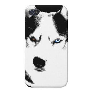 Caso fornido del Malamute del husky siberiano del iPhone 4 Funda