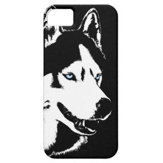 Caso fornido del Malamute del husky siberiano del iPhone 5 Carcasas