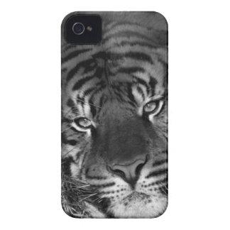 Caso fresco del iphone del tigre Case-Mate iPhone 4 cárcasa