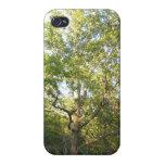 Caso frondoso del iPhone 4 del árbol