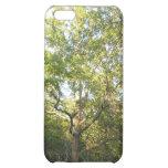 Caso frondoso del iPhone 5C del árbol