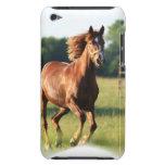 Caso galopante de iTouch del caballo de la castaña iPod Case-Mate Fundas