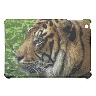 Caso grande del iPad del Gato-Amante de la fauna d