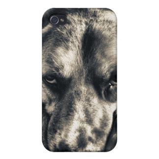 Caso gruñón del iPhone 4 del perro iPhone 4/4S Carcasas