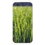 caso herboso del iPhone 5 iPhone 5 Cárcasa