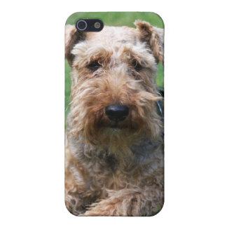 Caso hermoso del iphone 4 de la foto del perro del iPhone 5 coberturas