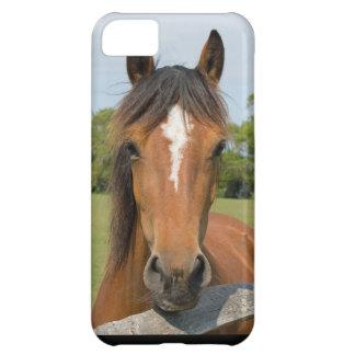 Caso hermoso del iphone 5c de la foto del caballo