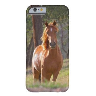 Caso hermoso del iPhone 6 del caballo para los Funda De iPhone 6 Barely There