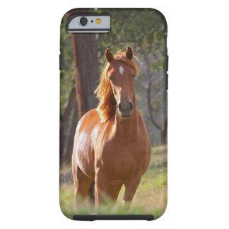 Caso hermoso del iPhone 6 del caballo para los Funda Para iPhone 6 Tough