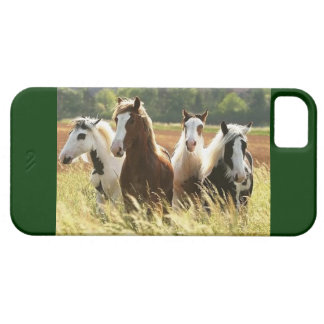 CASO IDEAL DE LOS AMANTES IPHONE 5 DEL CABALLO iPhone 5 Case-Mate PROTECTORES
