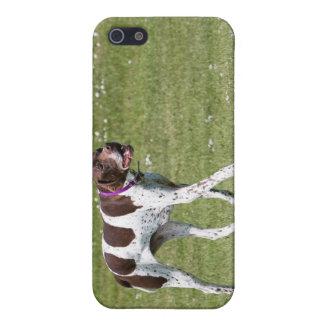 Caso inglés del iphone 4 del perro del indicador iPhone 5 cobertura