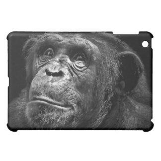 Caso internacional de la cubierta del chimpancé Ip