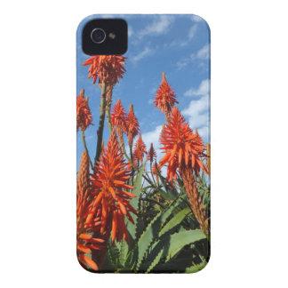 Caso intrépido de Arborescens Blackberry del áloe iPhone 4 Cárcasa