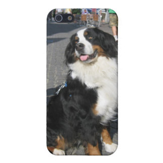 caso iPhone5 Berner Baviera de Fussen iPhone 5 Funda