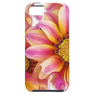 CASO IPHONE6 iPhone 5 CARCASAS