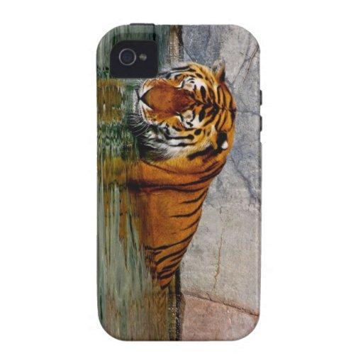 Caso Iphone 4 del tigre Case-Mate iPhone 4 Funda
