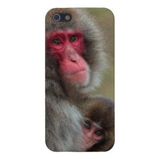 Caso japonés del iPhone 5 de los monos de Macaque iPhone 5 Funda