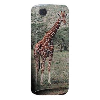 Caso jirafa iPhone 4/4S carcasa