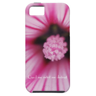 Caso latino floral rosado del iphone 5 de la cita funda para iPhone 5 tough