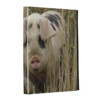 Caso lindo de Ipad del cerdo