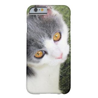 Caso lindo de la imagen del gato funda de iPhone 6 barely there