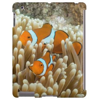 Caso lindo del iPad de los pescados del payaso